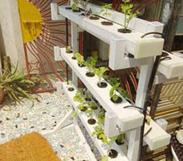 Hydroponics kit