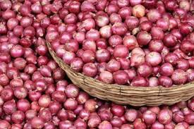 The importance and scope of the onion processing industry